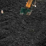 Organic Garden Soil and Its Benefits