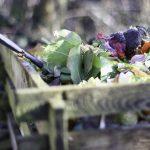 kitchen-waste