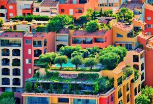 roof-top-garden