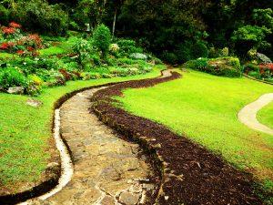 garden-footpath