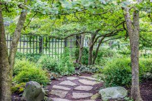 shadowy-garden