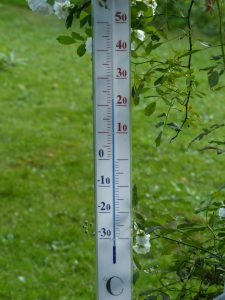 garden-thermometer